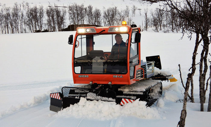 оранжевый snow rabbit 3