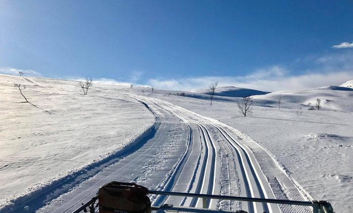 прокладка лыжни на snow rabbit