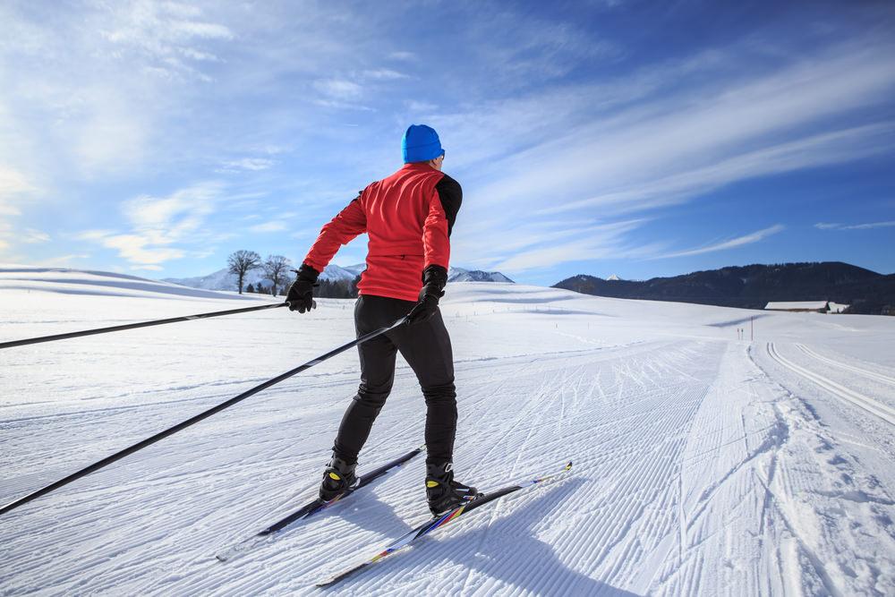 Бег на лыжах по пересеченной местности