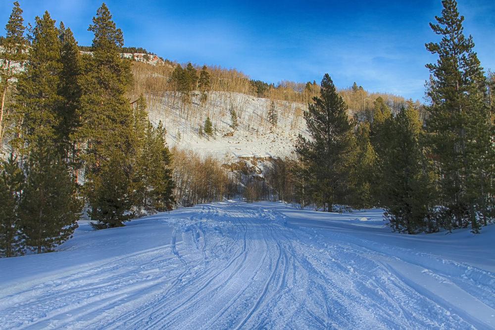 Для трассы на Косой горе в Туле купят ратрак и снегогенератор